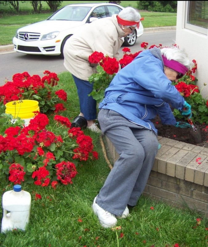 Hard at work planting red geraniums in the planters.