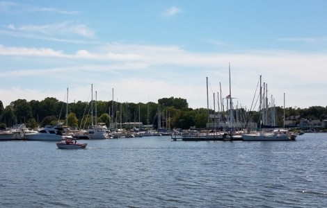 Saugatuck Star Boat Cruise & Dinner Outing